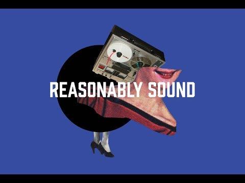 RS014 - Joe Hanson on Animals, Sound, and Semiotics