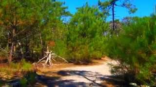 Le Porge Océan - Nature