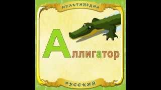Мультипедия животных (Instagram HD) Аллигатор