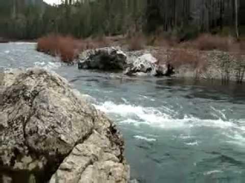 kalmiopsis wilderness area Oregon, The illinois river 3/10/2012
