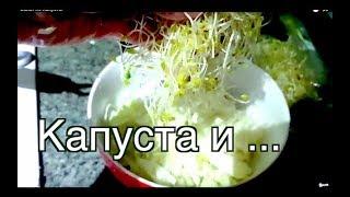 Салат из Капусты с Майонезом, Сметаной и Ростками Люцерны