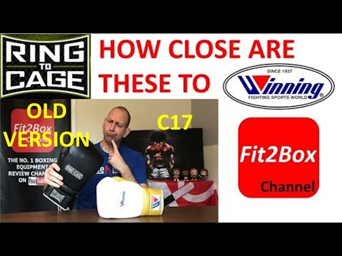 HOW CLOSE TO WINNING ARE THESE GLOVES?-RING TO CAGE C-17 BOXING GLOVES REVIEW