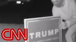 Why are Donald Trump's signs being stolen?