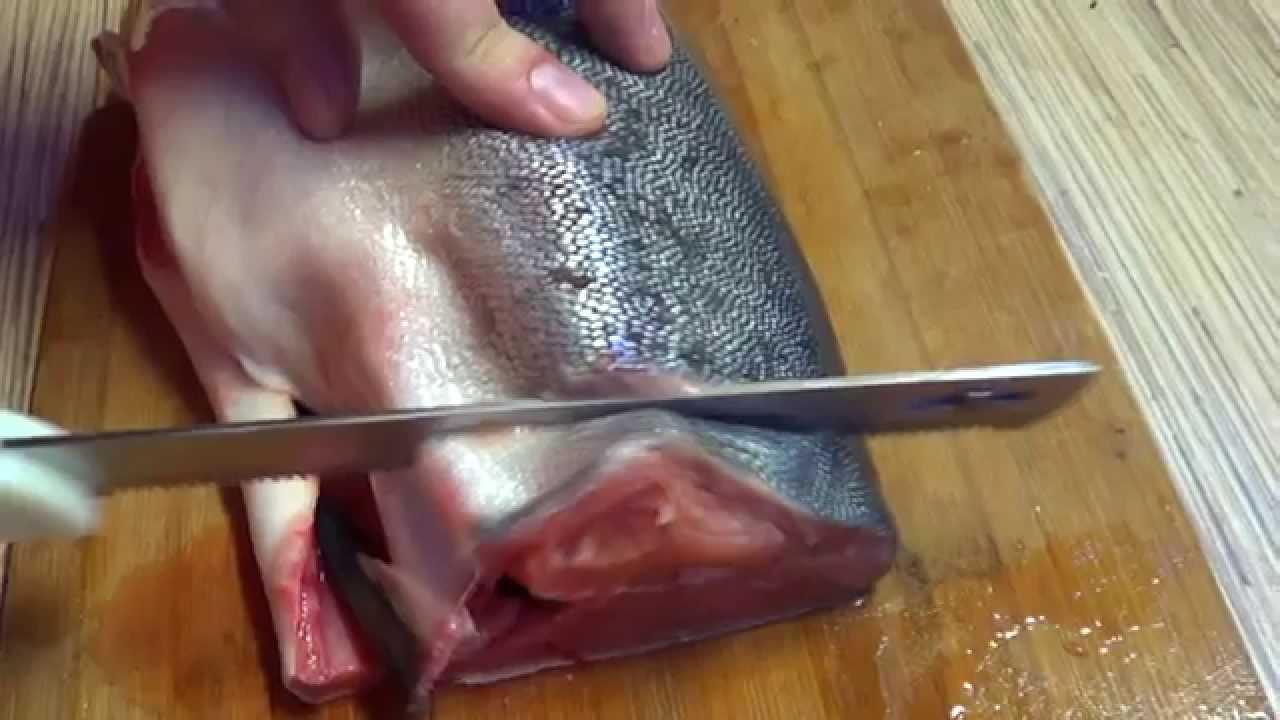 На агро доске объявлений украины вы сможете купить или продать рыбу живую оптом по наиболее приемлемой цене.