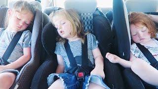 Taking Six Kids on a Road Trip to Byron Bay