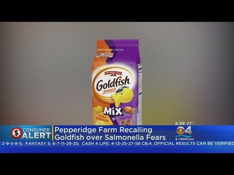 4 Types Of Goldfish Crackers Recalled Over Salmonella Fears