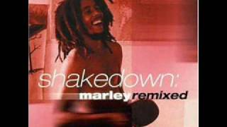 Soul Shakedown Party (Steve Hurley Remix)
