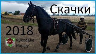 Скачки на лошадях город Троицк 2018г