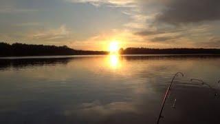 Река Дон .  Первая летняя рыбалка 2020