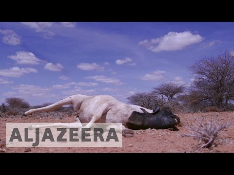 UN: Millions on verge of famine in Somalia