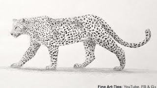 How to Draw a Leopard With Pencil - Big Cat(1 week trial: http://videoblocks.com/FineArtTips_0916 Visit my Patreon: https://www.patreon.com/artistleonardo My drawing book: http://amzn.to/1K7L8Ed Visit ..., 2016-09-20T15:01:43.000Z)