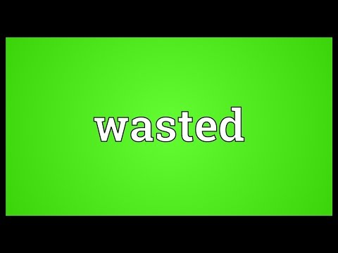 Wasted Meaning