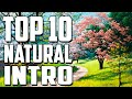 Top 10 amazing natural intro hd mp3