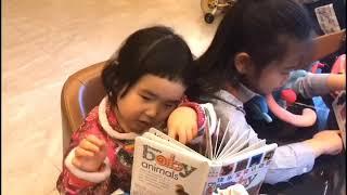 Foodie XiaoMan 超萌小吃貨~小蛮殿下跟姐姐两位好學小寶寳👧🏻👧🏻📖💕 #50個月 #beginwork #baby #eatingmachine  #小蛮 #xiaoman