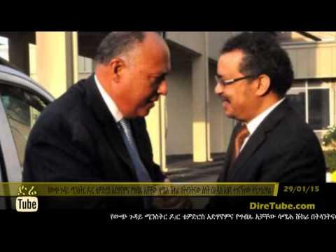 DireTube News Ethiopia, Egypt Fms Assess 'Technical Progress' On Nile Dam