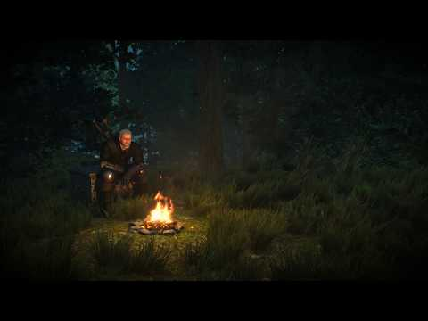 The Witcher 3 : Animated Wallpaper | On The Path