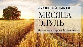 Духовный смысл месяца Элуль | Урок от директора портала Ваикра р. Яакова Шатагина