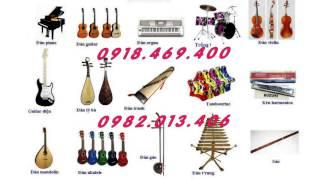 Nhạc cụ nụ hồng bán các loại nhạc cụ dân tộc truyền thống