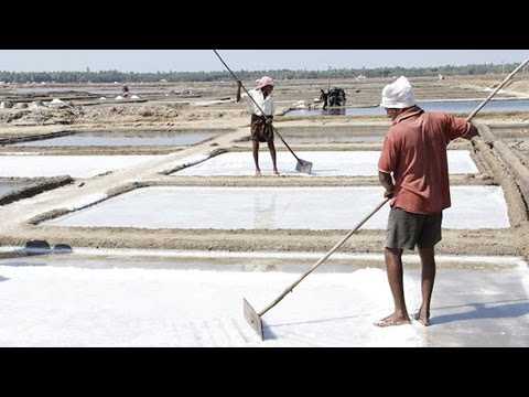 Salt Selling At Rs 400 In NCR, Government Denies Shortage | Oneindia News
