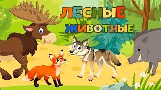 Лесные животные для детей - развивающие мультики про животных
