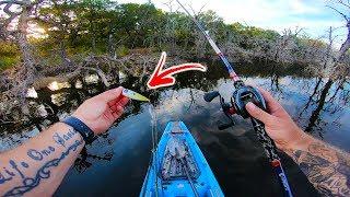 kayak-fishing-my-secret-spot-deep-in-the-trees