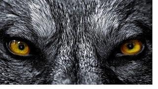 "KOOL G RAP & NECRO (THE GODFATHERS) - ""WOLF EYES"" FT. MR. HYDE"