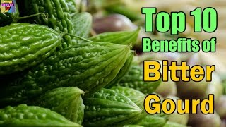 Benefits of Bitter Gourd Top 10 Health Benefits of Bitter Melon