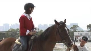 秋元玲奈(テレビ東京アナウンサー)が馬に乗り、操る。ロンドン仕込み...