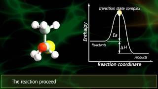 SN2 Reactions | University Of Surrey