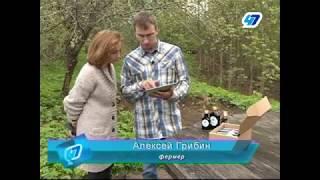видео Договор безвозмездного пользования земельным участком