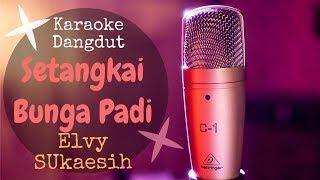 Karaoke Dangdut SETANGKAI BUNGA PADI - Elvy Sukaesih