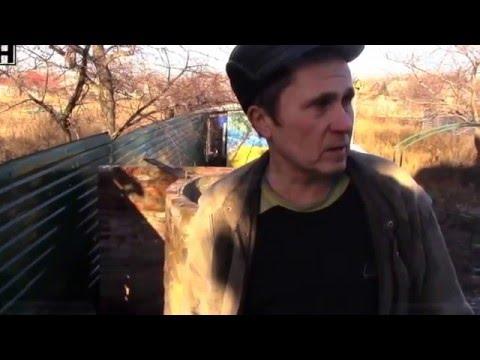 Война в Донбассе