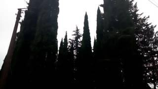 видео Погода в Абхазии в июне
