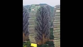 Дома деревья на острове Хайнань Китай Logistics Partner LLC