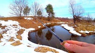 Рыбалка на МИКРО РЕЧКЕ весной по старым местам Рыбалка на спиннинг Рыбы НЕТ