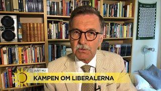 """Kampen om Liberalerna – """"Det försiggår mycket konstigt spel under ytan"""" - Nyhetsmorgon (TV4)"""