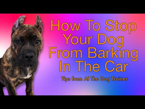 How Do I Stop My Dog From Barking In The Car? - Tips From Al The Dog Trainer