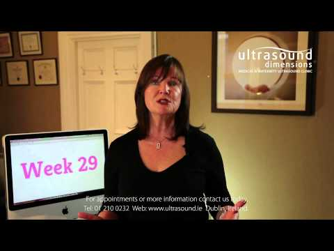 29 Weeks Pregnant - Your 29th Week Of Pregnancy