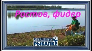 Диалоги о рыбалке - 051 / Ростов, фидер