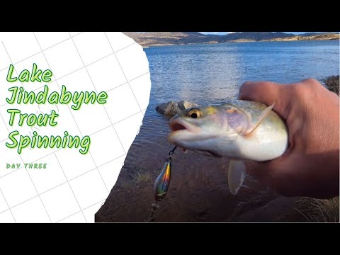 Lake Jindabyne Trout Spinning Day Three