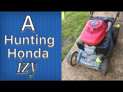 Honda Izy With A Hunting Engine  #smallenginenation