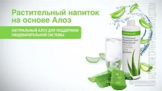 Растительный концентрат Алоэ Herbalife