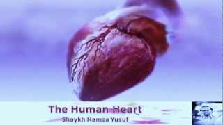 The Human Heart - Shaykh Hamza Yusuf