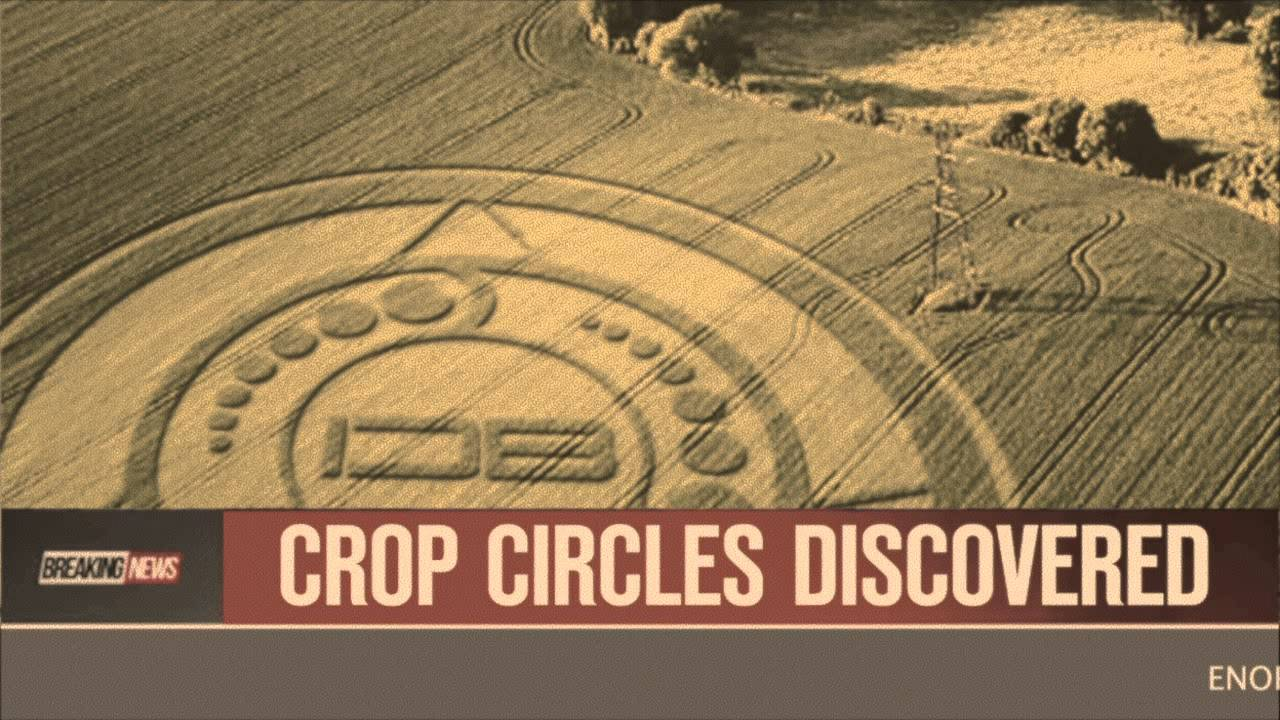 Crop Circles Discovered in Canada - October 2, 2013