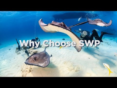 Gold and Silver Storage Offshore - Why Choose SWP