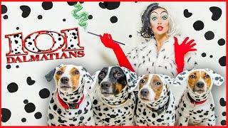 Круэлла Де Виль и её далматинцы КОСПЛЕЙ Make Up Круэллы и костюмы для собак