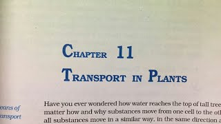 Ch 11 Transport In Plants With Summary Class 11 Ncert (Reading only) biology PART 2