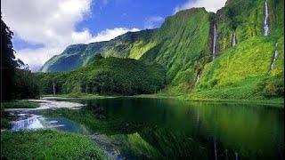 фильм документальный 2018 Мир дикой природы. Азорские острова. Чудеса природы. Документальный фильм