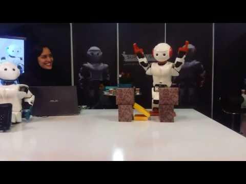 Iranian Robot Surena Mini Karate-Chop