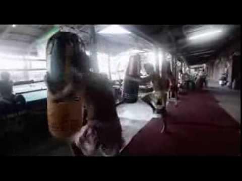 K-1 vs GLORY Hari Bonjasky Saki Zimmerman Aerts Karaev Banner Verhoeven Schilt Overeem Spong ★★★★★